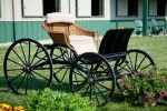 horse-carriage-hampshire-farm