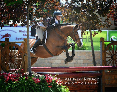 Jennifer Wood Media, 6.23.15: Canterbury Farm Captures Top Prizes At Showplace Spring Spectacular