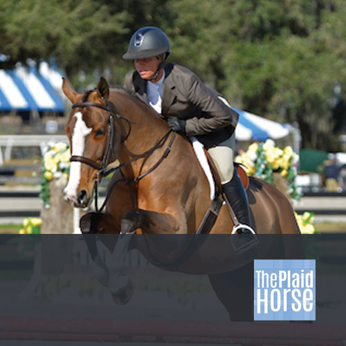 03.04.16: Canterbury Farm Kicks Off 2016 Show Season with Top Ribbons in Florida