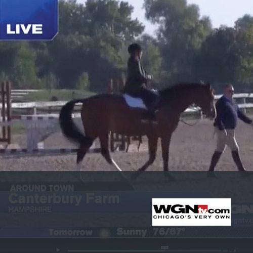 "October 2013: Canterbury Farm Featured on WGN'S ""Around Town"" Segment"