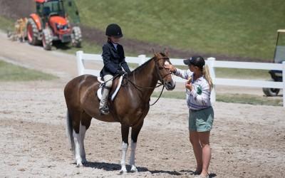 Canterbury Farm at Great Lakes Equestrian Festival 2016