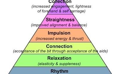 The Dressage Training Pyramid