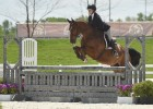 Chio Equitation