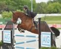 Chio Equitation 2