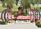 Chio Equitation 3