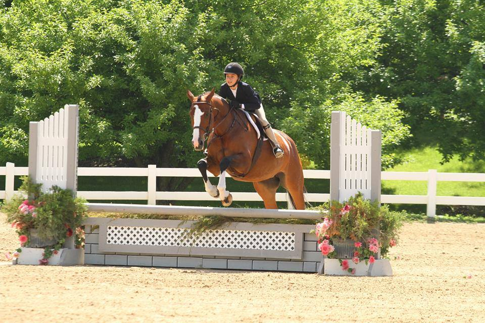 private horse jumping lessons